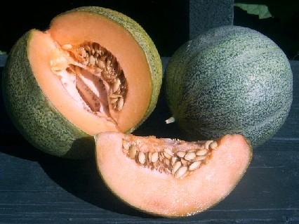 Jardin, terrasse RARE VERT Muscade Melon 10 Graines Vendeur ...
